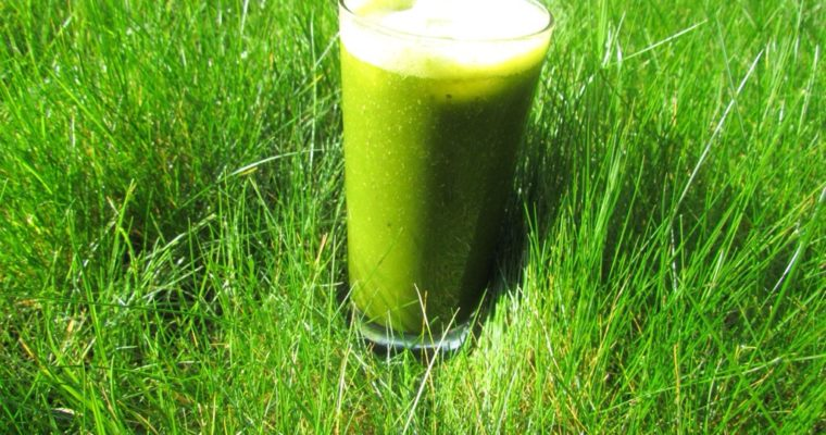 Organifi Green Juice Review: Get To Know This Superfood